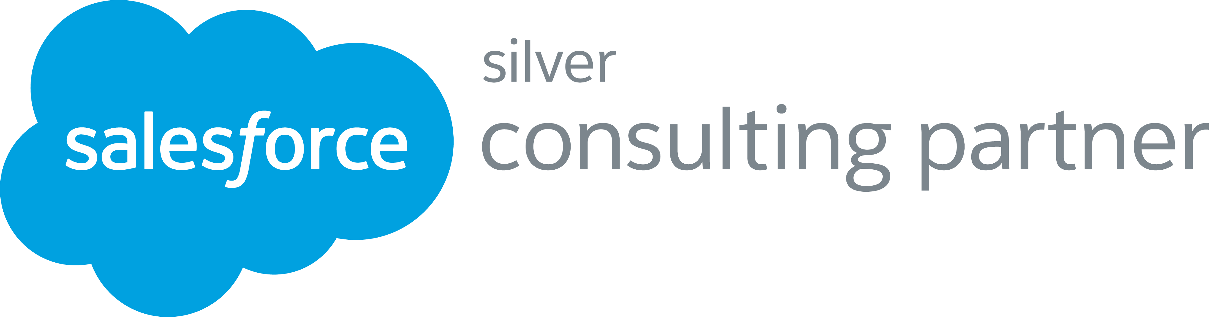 Silver Salesforce Consulting Partner